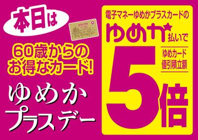 5/15 ゆめかプラスデー